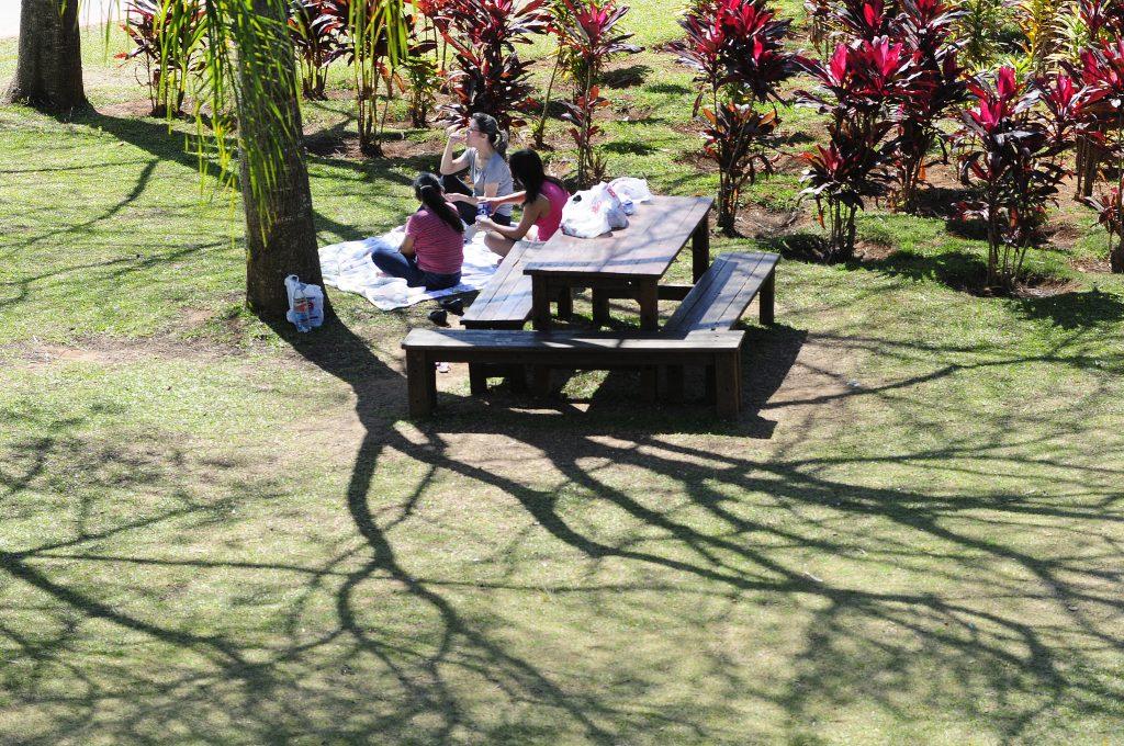 Mesa e bancos de madeira em um dos locais do parque da cidade perfeitos para um piquenique em jundiaí!